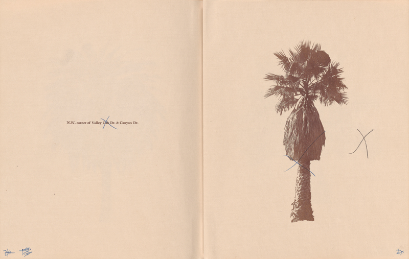 ART_RuschaE_Palm_Trees_dummy_page_26_27_001_300dpi copy