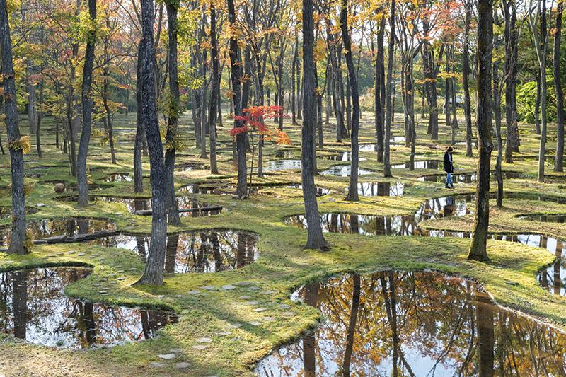 8. Junya Ishigami Art Biotop Water Garden