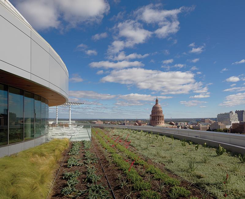 SXSWCenter_green-roof